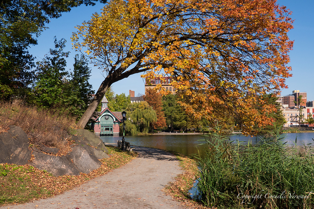 Autumn colors at the Harlem Meer in Central Park with a view towards the Dana Nature Center.