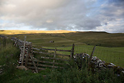Evening light just before sundown over Coverdale in the North Yorkshire Dales, England, UK. It is accessible by a single track road, which runs the length of the dale and over the pass. This is agricultural farming land which could not be more dramatic, under big skies with the hills criss crossed by dry stone walls.