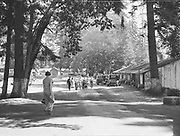 5575Camp grounds at the E. Clemens Horst hop ranch near Independence, Oregon. September 1, 1942.