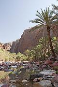 A valley at the bottom of Fermhin Mountain, Dixsam, Socotra, Yemen