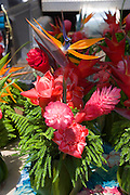 Red Ginger, Kaloa Framers Market, Kauai, Hawaii