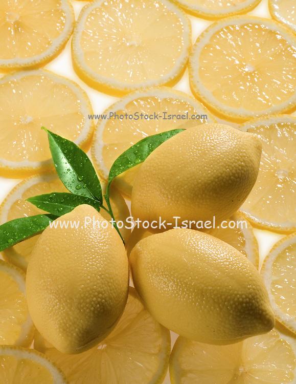 backlit Whole and sliced lemons