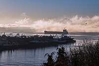 Elliott Bay in the Fog, Smith Cove