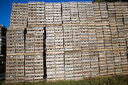 Piles of wooden crates on farm, Shottisham, Suffolk, England