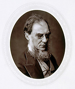 Joseph Dalton Hooker (1817-1911) English botanist, Director of Royal Botanic Gardens, Kew. Woodburytype published 1881