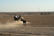 Horseback riding in the Negev Desert, Israel