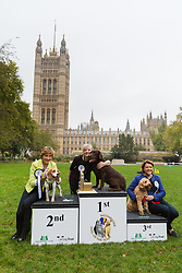 © Licensed to London News Pictures. 26/10/2017. LONDON, UK. Winners: TRACEY BRABIN MP and her dog, Rocky, REBECCA POW with a Dogs Trust rescue dog and MARIA MILLER MP and her dog, Ted at the Westminster Dog of the Year Competition held in Victoria Tower Gardens. The Westminster Dog of the Year Competition is organised jointly by the Kennel Club and the Dogs Trust..  Photo credit: Vickie Flores/LNP