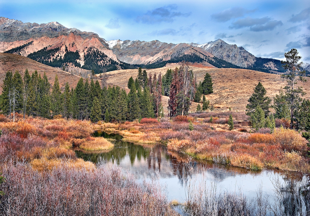 wetland below Boulder Mt. Sun Valley Idaho USA