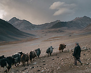 "Herding yaks. Camp at a Wakhi high pasture names ""Warm"", below Garumdee Pass. Guiding and photographing Paul Salopek while trekking with 2 donkeys across the ""Roof of the World"", through the Afghan Pamir and Hindukush mountains, into Pakistan and the Karakoram mountains of the Greater Western Himalaya."
