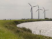 wind turbines in Dutch landscape