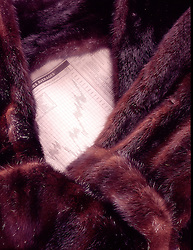 still life newspaper stock market chart textured soft warm mink coat jacket CONCEPT STOCK PHOTOS CONCEPT STOCK PHOTOS