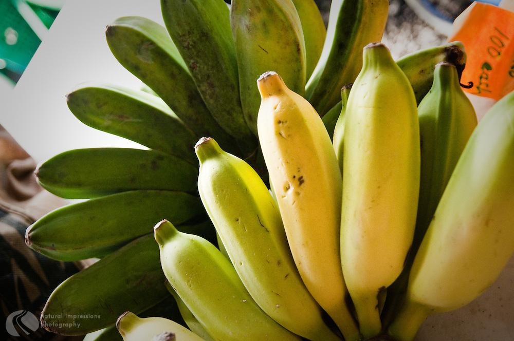 Bananas from the Hilo, Hawaii farmers market.