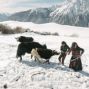 Traditional yak herders above the village of Laya.
