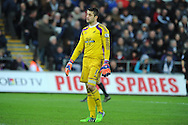 Swansea goalkeeper Lukasz Fabianski looks on dejected after conceding the 4th Chelsea goal. Barclays Premier League match, Swansea city v Chelsea at the Liberty Stadium in Swansea, South Wales on Saturday 17th Jan 2015.<br /> pic by Andrew Orchard, Andrew Orchard sports photography.