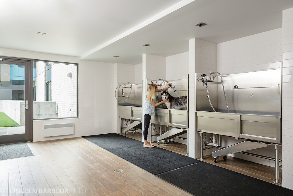 A woman washes her dog in a custom dog washing station in an upscale apartment building