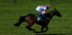 """Simply The Betts ridden by Daryl Jacob goes onto win the Irish Thoroughbred Marketing """"National Hunt"""" Maiden Hurdle during Kids Carnival Day of The Qatar Airways May Racing Carnival at Warwick Racecourse."""