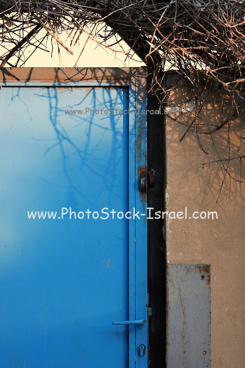 Blue iron door