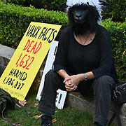2021-09-15 Parliament Square, London, UK. A person wearing a sheep head alone anti-vaxx to Pressure on Parliament, freedom no vaccination, no vaccine passport, protect our children.