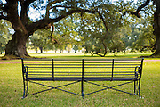 Empty bench in Louisiana, USA