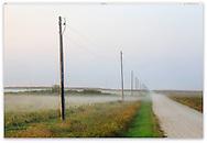 A misty sunrise over a farmerís field in South Dakota, USA