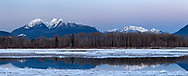 The Golden Ears mountains are a familiar sight from the Fraser Valley (especially Langley and Maple Ridge). Here the Golden Ears and Mount Robie Reid reflections show in the Fraser River between patches of ice.  This view is photographed from Brae Island Regional Park's Tavistock Point in Langley, British Columbia.  The Golden Ears (Mount Blanshard) are McPhaden Peak, Edge Peak and Blanshard Peak.  Mount Robbie Reid can be seen on the right.