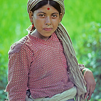 A lowland Nepali village girl stands beside her family's rice paddies near Lamosangu.  The red spot on her forehead  probably means that she is married, but could also just be applied for beauty.