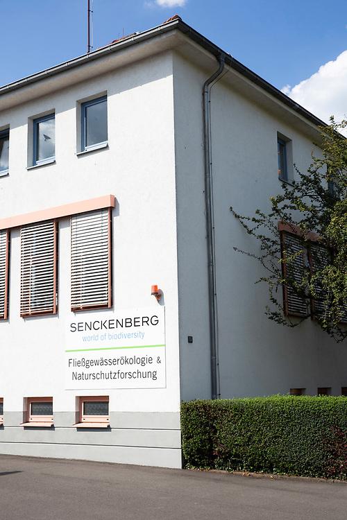 Thema Wolf in Deutschland: Naturschutzgenetik im Senckenberg Forschungsinstitut<br /> <br /> <br /> INFO: Genetische Analysen werden im Fachgebiet Naturschutzgenetik am Senckenberg Forschungsinstitut Standort Gelnhausen durchgeführt. Das Labor ist seit 2010 das Referenzzentrum für die Wolfsgenetik in Deutschland. <br /> Die deutschlandweit einheitliche Probenanalyse ermöglicht es, Individuen bundesländerübergreifend ihren Herkunftsrudeln zuzuordnen und Verwandtschaftsstrukturen zu ermitteln.