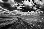 Clouds and field, Grande Pointe, Manitoba, Canada