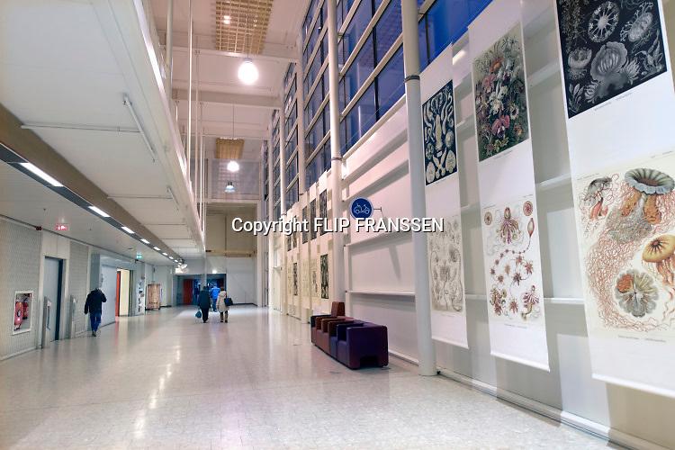 Nederland, Nijmegen, 6-2-2019Bezoekers in de gang, hal, van een ziekenhuis , Radboudumc. Foto: Flip Franssen