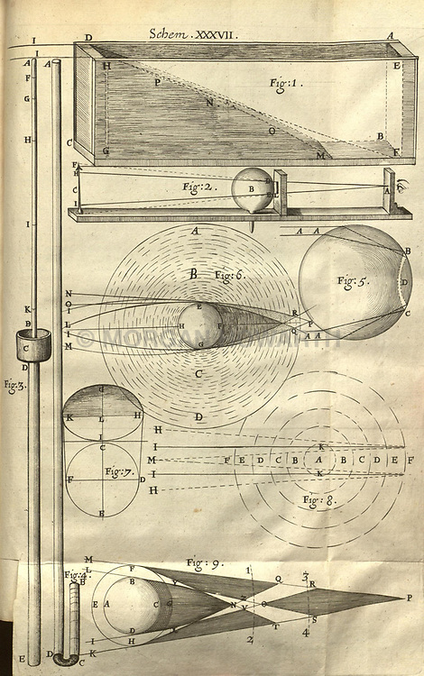 Micrographia, or, Some physiological descriptions of minute bodies made by magnifying glasses :<br /> London :Printed by Jo. Martyn and Ja. Allestry, printers to the Royal Society ... ,1665.<br /> https://biodiversitylibrary.org/page/786617