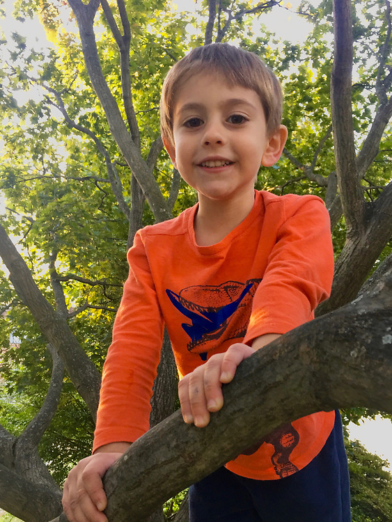 Children playing, Ali climbs tree