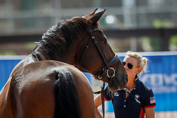 Graves Laura, USA, Verdades<br /> World Equestrian Games - Tryon 2018<br /> © Hippo Foto - Sharon Vandeput<br /> 15/09/2018