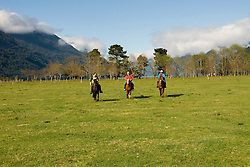 Chile, Lake Country: People riding horses at Peulla in a meadow in the Andes..Photo #: ch604-33243.Photo copyright Lee Foster www.fostertravel.com, lee@fostertravel.com, 510-549-2202.