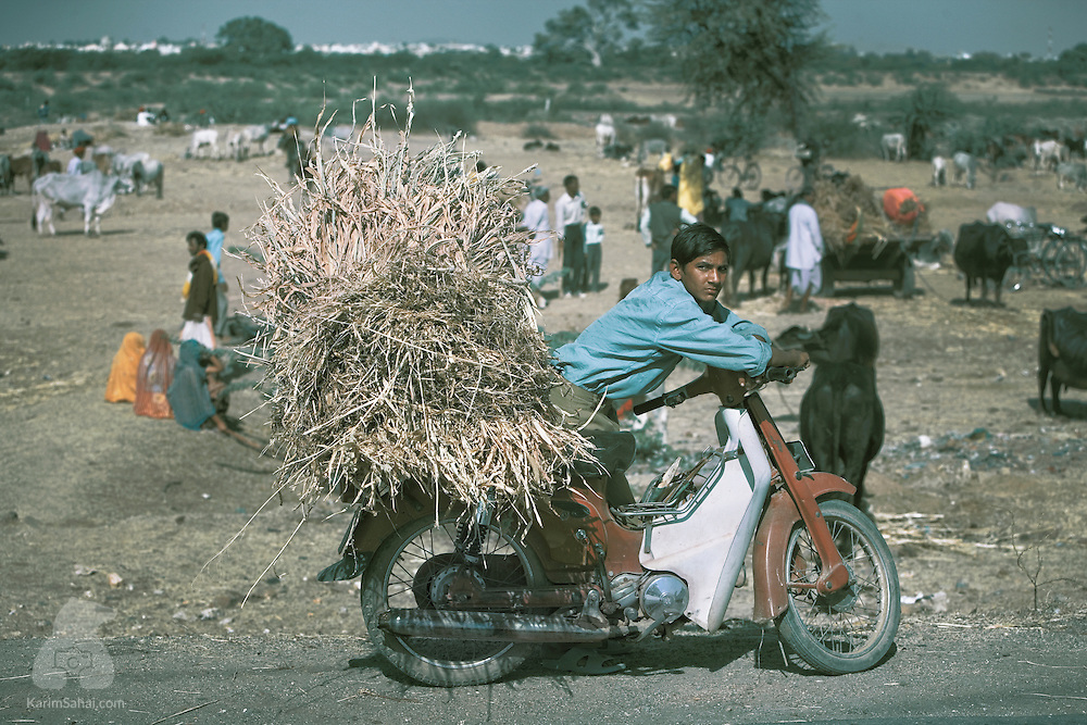 A young carries hay on his motorcycle, Beawar, Rajasthan, India.