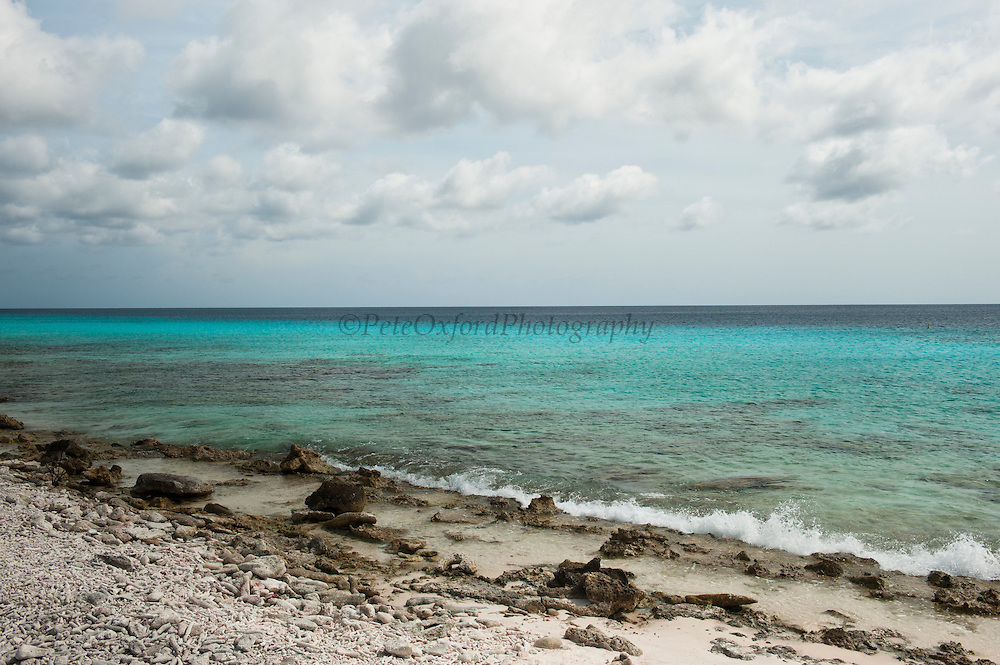 Coral Beach Scene<br /> BONAIRE, Netherlands Antilles, Caribbean