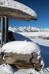 """Some of the last remnants of the settlers of Jackson Hole.  This is the north end of the Shane Cabin, of the famous movie.<br /> <br /> For production prints or stock photos click the Purchase Print/License Photo Button in upper Right; for Fine Art """"Custom Prints"""" contact Daryl - 208-709-3250 or dh@greater-yellowstone.com"""