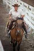 Brazilian gaucho cowboy riding a horse down the cattle run. Gaucho cowboy Rodeo, Flores de Cunha, Rio Grande do Sul.