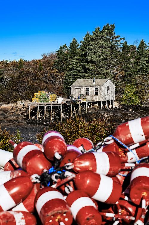 lobster Buoys, Corea Harbor, Maine, USA