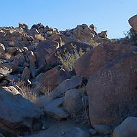 USA, California, Joshua Tree. Coyote Hole Petroglyphs.