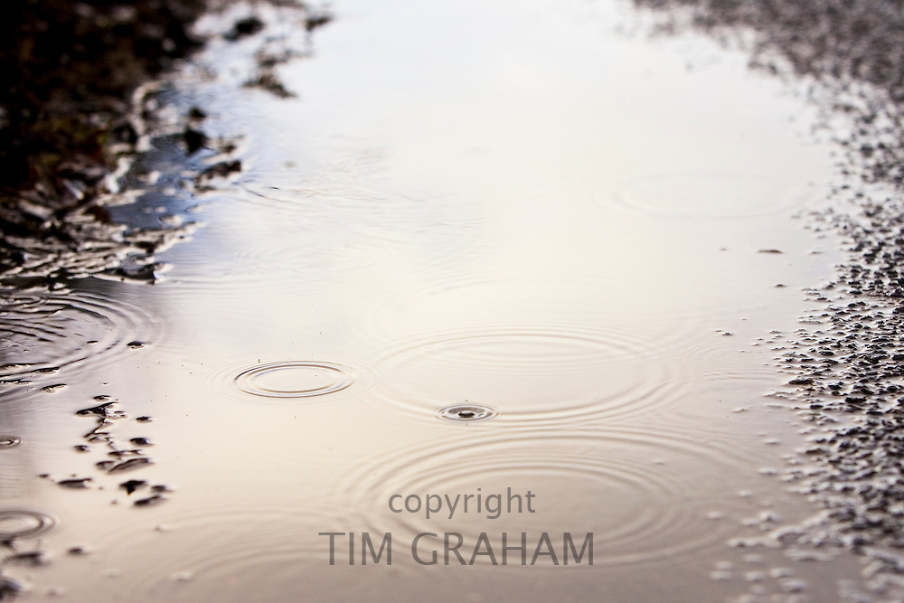Ripples in a rainwater puddle, Oxfordshire, United Kingdom