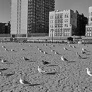 winter beach dec 23, 2019
