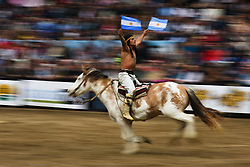 July 29, 2017 - Buenos Aires, Argentina - A horse show during the 131th Rural Exhibition (Spanish: La Exposicion Rural), an annual agricultural and livestock show. (Credit Image: © Anton Velikzhanin via ZUMA Wire)