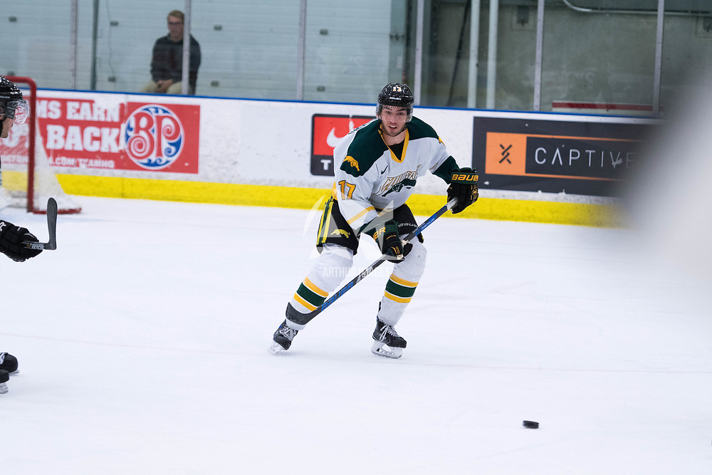 4th year forward Corey Kosloski in action during the Men's Hockey Home Opener on October 6 at Co-operators arena. Credit: Arthur Ward/Arthur Images