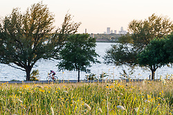 Cyclists and hikers on path around lake behind field of wildflowers and Arkansas yucca (Yucca arkansana), Blackland Prairie remnant, White Rock Lake, Dallas,Texas, USA