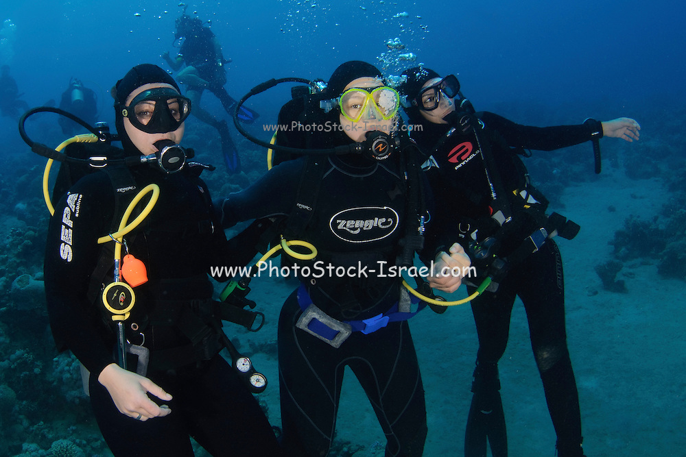 A group of three scuba divers posing for the camera Photographed in the red sea Aqaba, Jordan
