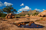 The Kanab Plateau stands tall over the rocky landscape of the Tuweep/Toroweap area of Grand Canyon National Park, Arizona.