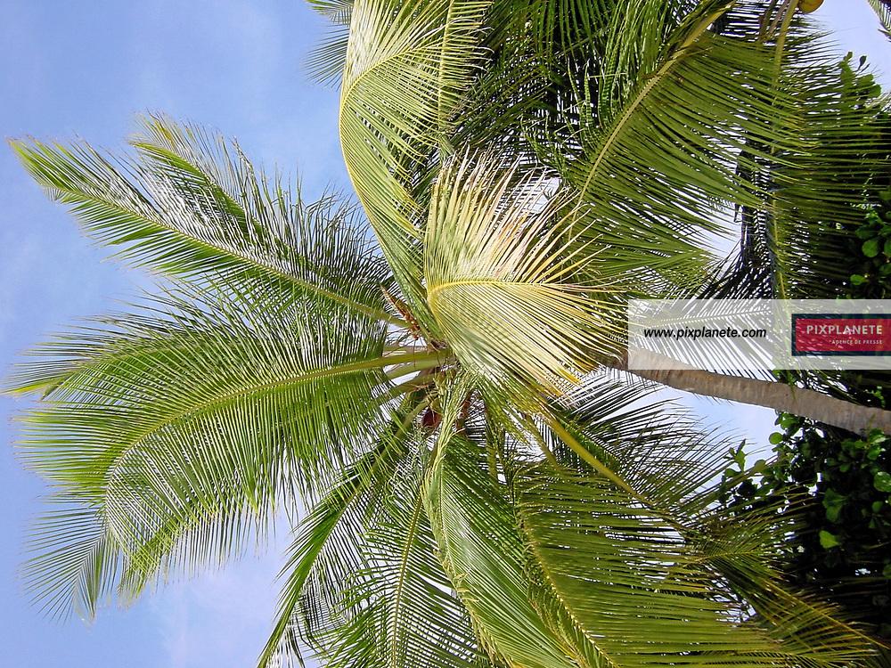 Sujet tourisme - Caraïbe - île de Porto Rico - Palomino Island exploitée par l' hotel El Conquistador - Août 2006 - JSB / PixPlanete