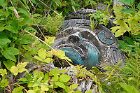 Fallen totem pole lies among leaves at Yuqout (Friendly Cove), Vancouver Island, Canada