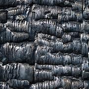 Burned timber wall