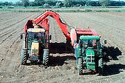Nederland, Niftrik, 24-9-2002..Boer, loonbedrijf, haalt aardappeloogst binnen in de uiterwaarden van de Maas. Landbouwmachines...Foto: Flip Franssen/Hollandse Hoogte